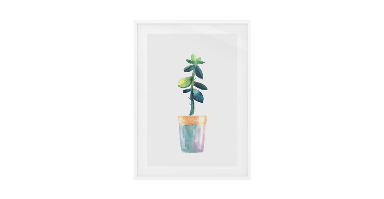 The Succulent Print White Wood Frame Medium Leaf